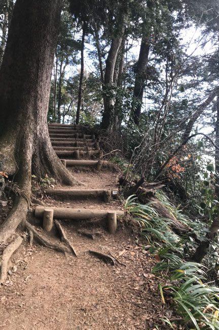 高尾山 6号路の階段