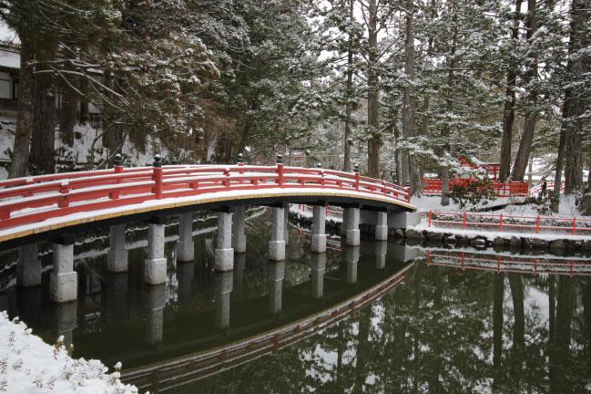 高野山 蓮池
