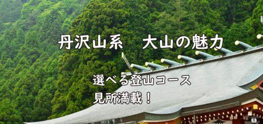 丹沢 大山TOP画像
