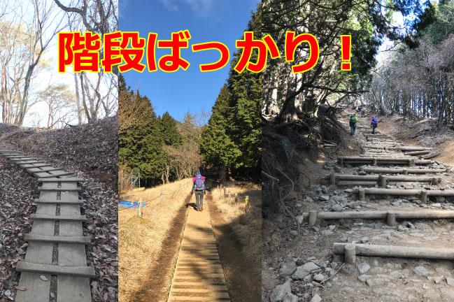 塔ノ岳名物 階段