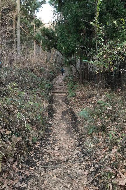 塔ノ岳 登山道入り口付近