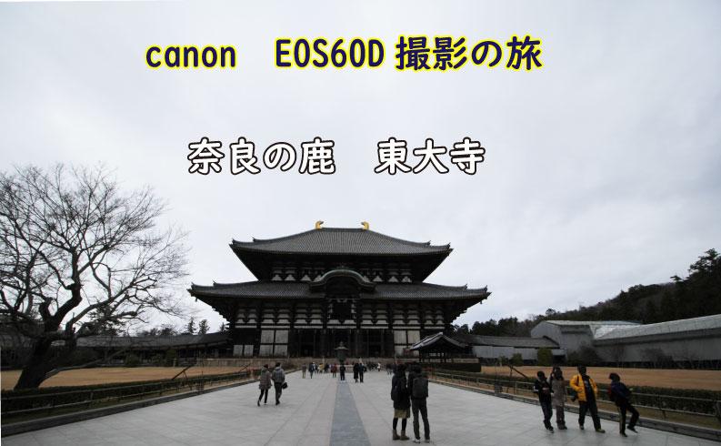 東大寺TOP画像