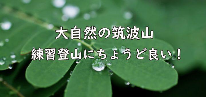筑波山練習登山TOP画像
