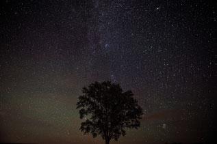 美瑛の星空写真