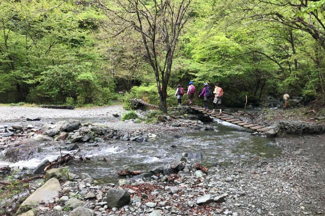 鍋割山 林道 橋