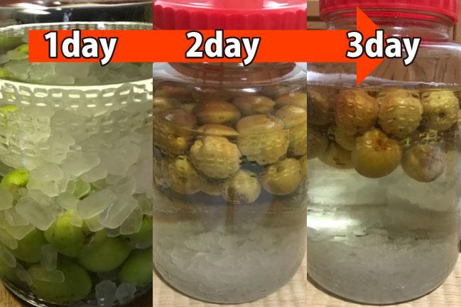 梅酒1~3日間の変化写真