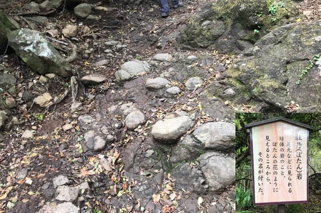 丹沢大山の牡丹岩