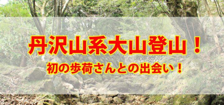 丹沢山系大山登山TOP画像