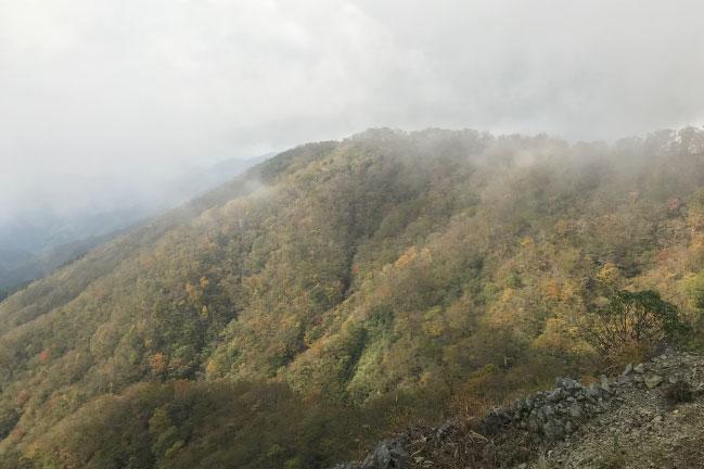 2019年10月下旬の塔ノ岳紅葉具合
