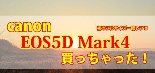 キャノンEOS5D Mark4購入レビューTOP画像