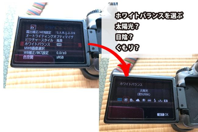 キヤノンEOS60D ホワイトバランス設定画面の写真