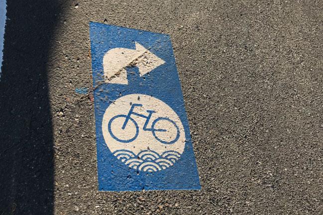 房総フラワーラインの道路にある自転車通行場所のマーク